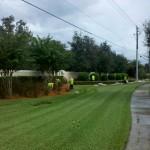"""Village Walk"" - Sarasota, FL"